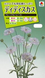 花種 NL200 ディディスカス ブルー(ブルーレース) 小袋 [FZZ457]【花の種】【タキイのタネ】【送料110円〜】【ガーデニング】