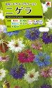 花種  NL200 ニゲラ ペルシャンジュエル 小袋 [FZZ770]【花の種】【タキイのタネ】【ガーデニング】