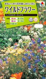 花種 NL200 ワイルドフラワー ハイドロカラー ミックス 小袋 [FZZ956]【花の種】【タキイのタネ】【送料110円〜】【ガーデニング】