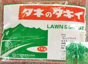 緑肥用種子 ソルガム ウインドブレイクソルゴー 1kg【緑肥、景観用の種】【タキイのタネ】【ガーデニング】