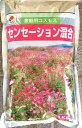 景観用コスモス センセーション混合 1kg【花の種】【緑化事業】