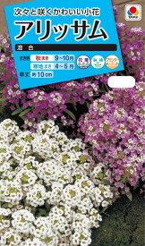 花種 NL150 アリッサム混合 小袋 [FAR129]【花の種】【タキイのタネ】【ガーデニング】