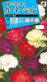 花種 NL150 カーネーション シャボー混合 小袋 [FCN129]【花の種】【タキイのタネ】【ガーデニング】