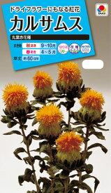 花種 NL150 カルサムス 丸葉赤花種 小袋 [FZZ190]【花の種】【タキイのタネ】【ガーデニング】