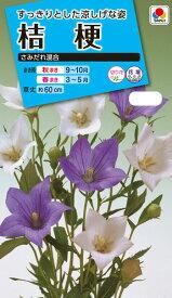 花種  NL150 桔梗 さみだれ混合 小袋 [FKK110]【花の種】【タキイのタネ】【ガーデニング】