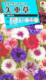 花種 NL150 矢車草 八重咲混合 小袋 [FYG110]【花の種】【タキイのタネ】【送料110円〜】【ガーデニング】