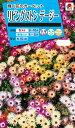 花種 NL150 リビングストンデージー 小袋 [FZZ740]【花の種】【タキイのタネ】【ガーデニング】