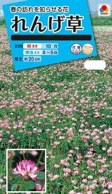 花種 NL150 れんげ草 小袋 [FZZ940]【花の種】【タキイのタネ】【送料110円〜】【ガーデニング】