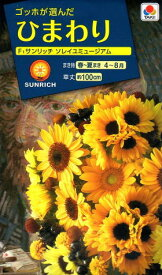 花種 NL300 ひまわり サンリッチソレイユミュージアム 小袋 [FHM510]【花の種】【タキイのタネ】【ガーデニング】