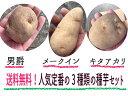 【送料無料】北海道産 人気定番のじゃがいも種3点セット(男爵、メークイン、キタアカリ)各500g 馬鈴薯種【ジャガイモ種】じゃがいも