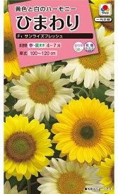 花種  NL300 ひまわり サンライズフレッシュ 小袋 [FHM452]【花の種】【タキイのタネ】【ガーデニング】