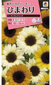 花種  NL300 ひまわり サンセットリッチ 小袋 [FHM451]【花の種】【タキイのタネ】【ガーデニング】