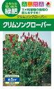 緑肥用種子 クリムゾンクローバー ディクシー 小袋【BCL831】【緑肥、景観用の種】【タキイのタネ】