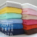 おぼろタオル バスタオル卒業宣言 ミニ バスタオル 小さめ ロング フェイスタオル まとめ買い おしゃれ かわいい 日本…