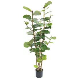人工観葉植物 フェイクグリーン シーグレープ1600 【人工観葉植物・造花】