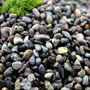 大磯砂利 2分 約6mm 約40kg入り 化粧砂利 【砂利 庭】【庭石】【ミックス砂利】【ガーデン】【エクステリア】