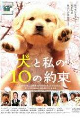 【中古】DVD▼犬と私の10の約束▽レンタル落ち