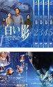 全巻セット【送料無料】【中古】DVD▼白い影(6枚セット)全5巻+その物語のはじまりと命の記憶▽レンタル落ち