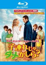 【中古】Blu-ray▼子連れじゃダメかしら? ブルーレイディスク【字幕】▽レンタル落ち