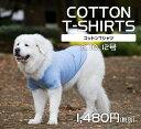 【全品クーポン!】大型 犬服 コットン Tシャツ 綿100% 8号 10号 12号 very newドッグウェア giftbox入り抜け毛対策…