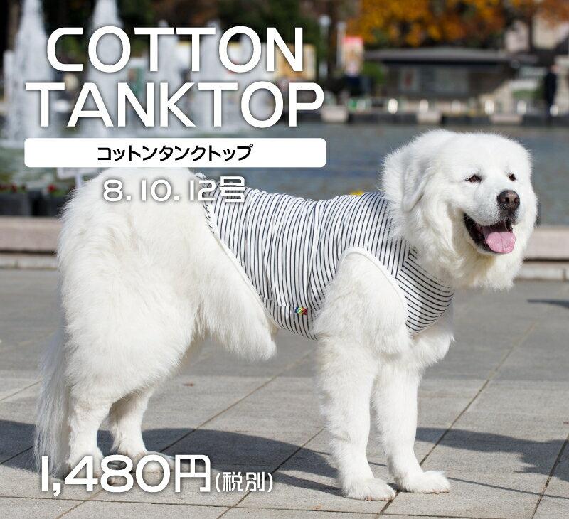 大型犬服 コットン タンクトップ 綿100% 8号10号12号very newドッグウェア giftbox入り
