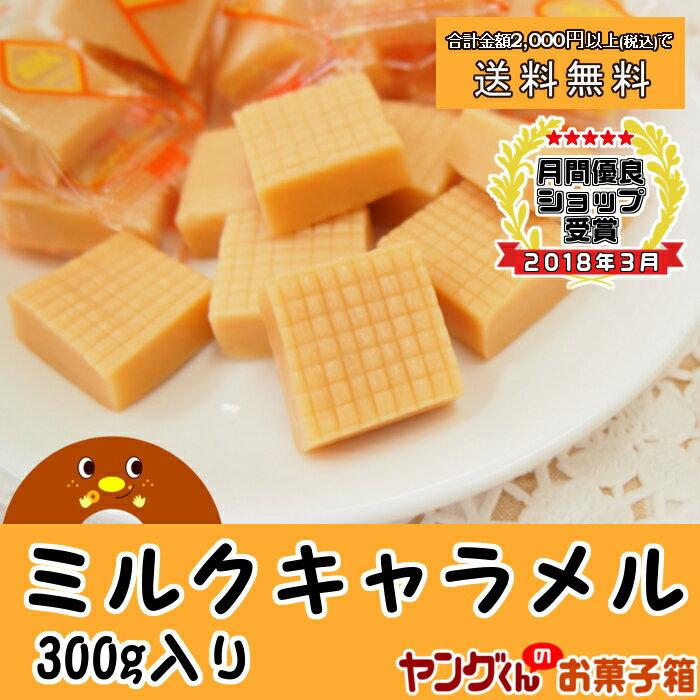 【アウトレット・訳あり】300gミルクキャラメル