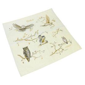 #138053ザ・プリンテッドイメージ(THE PRINTED IMAGE)バンダナ(55×55cm) - OWLS/オウルズ スカーフ ハンカチーフ 大判 弁当包み フクロウ 鳥 ベージュ オフホワイト 生成り