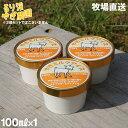 (牧場直送) るり渓 ヤギミルク アイス 100ml やぎミルク アイスクリーム 国産(後払い不可) yct/c