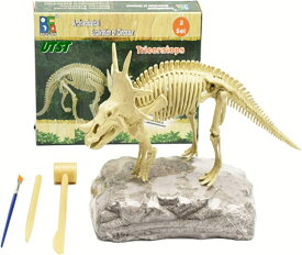 恐竜スティラコサウルス 角龍 草食恐竜 化石発掘セット