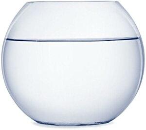 ガラス製 鉢 テラリウム 観葉植物 インテリア アクアリウム 金魚鉢 にも(24cm)
