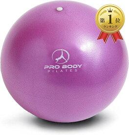 正規輸入品ProBody Pilates ミニエクササイズボール 空気調整器付き約23cm :バレー ヨガ ピラティス 在宅トレーニング 男女兼用(パープル)