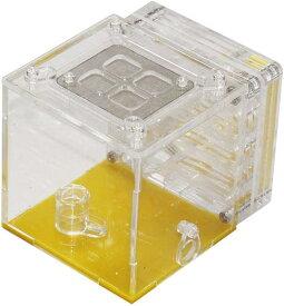 アリ 飼育 観察 キット アリの巣 研究 理科 夏休み 自由研究 課題 MDM