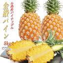 パイナップル 台湾産 金鑽パイン 5kg 完熟パイナップル 台湾パイン 糖度約14〜18度 【4月下旬〜発送予定】 母の日 プ…