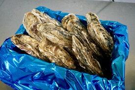 殻付き牡蠣(生食用)北海道厚岸湾仙鳳趾(せんぽうし)産 2Lサイズ 小箱4Kg(約15個)1個→250〜300g