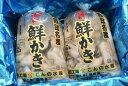 むき身牡蠣(生食用)北海道厚岸湾仙鳳趾(せんぽうし)産 むき身 500g×2本(500g→約20〜25粒)