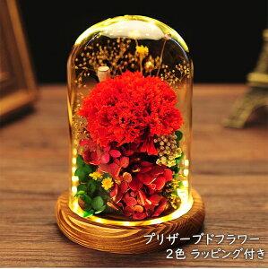【19日20時〜30日23時※P2倍】【送料無料】プリザーブドフラワー ガラスドーム ギフト 枯れない花 プリザーブド フラワー アレンジメント 誕生日 プレゼント かわいい カーネーション 花 おし