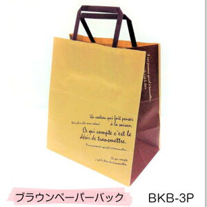 紙袋 BKB-3P BKFブラウンペーパーバッグ (10枚)クラフト紙 手提げ袋 紙袋 ペーパーバック ラッピング袋 クラフト紙 かわいい おしゃれ