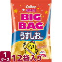 カルビー ポテトチップス ビッグバッグ うすしお味 170g×12袋