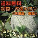 【送料無料】初物・夕張メロン(共選品・優品)1玉あたり1.3〜1.6kg前後(2玉)