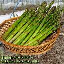 予約商品:5月中旬頃より発送 北海道産 グリーンアスパラ 1kg 前後 Lまたは2Lサイズ