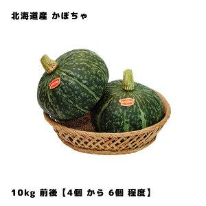 北海道産 かぼちゃ 10kg 前後 (カボチャ 南瓜) (4個から6個程度)