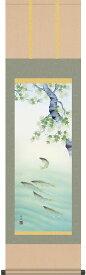 掛軸(掛け軸) 夏用 楓に鮎 長江桂舟作 尺三立 約横44.5cm×縦164cm g4150