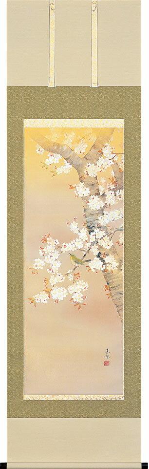 掛軸(掛け軸) 桜に小禽 河村東陽作 尺五立 約横54.5cm×縦190cm【送料無料】p9642