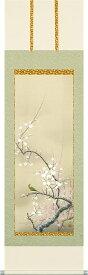 掛軸(掛け軸) 春用 紅白梅に鶯 北条静香作 尺五立 約横54.5cm×縦190cm【送料無料】p9658