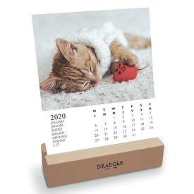 ドレジャー【デスクカレンダー】CATS(77005127)2020年カレンダー(卓上タイプ)(猫/動物/可愛い/イラスト/写真/フォト/スケジュール/月曜始まり/竹/日本語/英語/スペイン語/フランス製/中国印刷/輸入雑貨/日用品)[FSC認証]