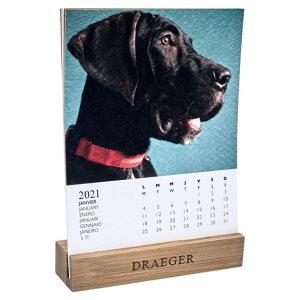 ドレジャー 2021年【デスクカレンダー】DOGS(卓上タイプ)犬/動物/かわいい/イラスト/写真/スケジュール/月曜始まり/竹製ベース/日本語/英語/フランス製/中国印刷/輸入雑貨(21DC-003)[FSC認証]