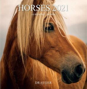 ドレジャー 2021年【ラージカレンダー】HORSES(壁掛けタイプ)馬/動物/かわいい/競馬/イラスト/写真/スケジュール/月曜始まり/日本語/英語/フランス製/中国印刷/輸入雑貨(21LC-007)[FSC認証]