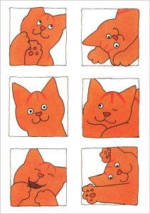 ポストカード 【イラスト】絵本/ディッキー・ディックシリーズ「いろんな表情のディッキー」【150×105mm】(BK4552)[FSC認証](猫/キャット/CAT/シンプル/ファンシー/かわいい)