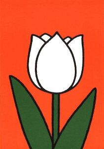ポストカード 【イラスト】ミッフィーシリーズ/ディック・ブルーナ「白いチューリップ」絵本/花/グッズ/コレクション/かわいい/贈り物ギフト(DB257)[FSC認証]