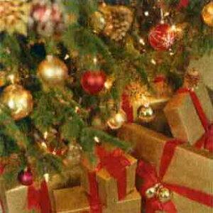 グリーティングカード 【クリスマス】 クリスマスプレゼント【封筒付き/白】【封筒サイズ165×165mm】【中面/「With all Good Wishes for Christmasand the New Year」の文字あり】(NXT-G5605)